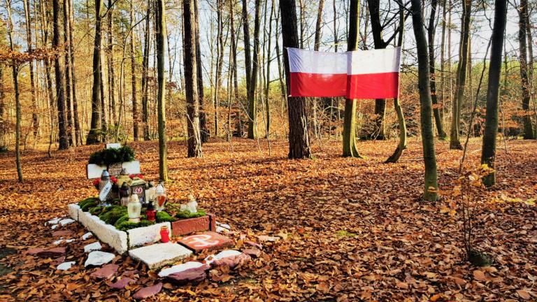 Jesienny Spacer-Grób Nieznanego Żołnierza autor Nikola Pikula